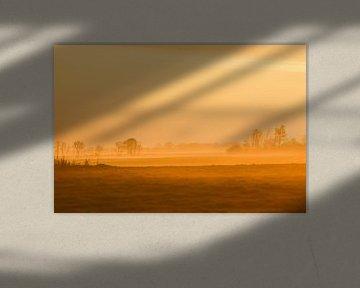 Silhouette van Johanna Varner