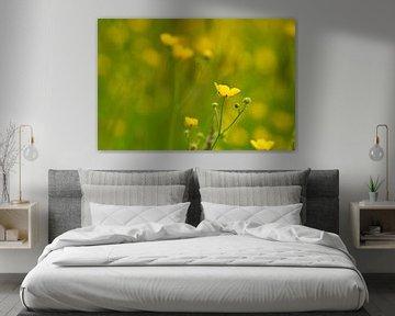 Geel en groene grasvelden van JM de Jong-Jansen