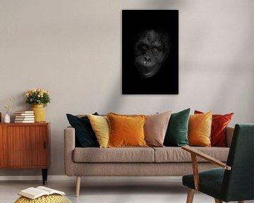 vriendelijk orang-oetan gezicht met oranje slimme ogen en zwart-witte stalen huid close-up slimme an van Michael Semenov