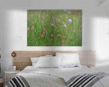 Blumenwiese von Claudia Moeckel