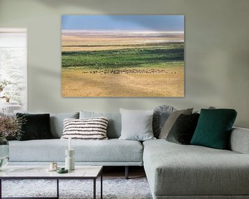 Vaste paysage du Ngorongoro en Tanzanie. sur Diane Bonnes