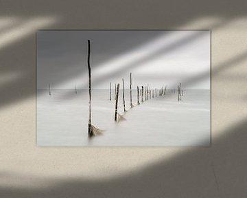 Palen boven water (NL)