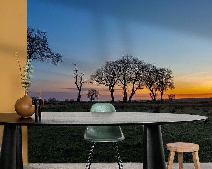 Sfeerimpressie behang: Afrika in Drenthe van Anneke Hooijer
