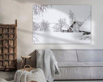 Lapland van Frank Peters