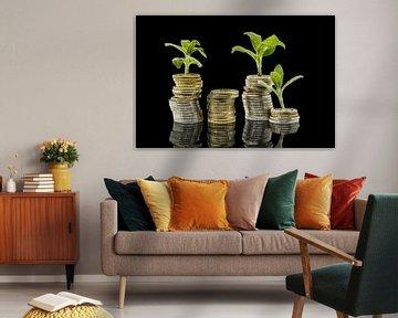 Pflanzen wachsen aus gestapelten Geld Münzen vor schwarzem Hintergrund mit Spiegelungbackground with von Hans-Jürgen Janda