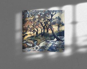 Namiddag zonlicht in de olijfgaard (vierkant) van Nop Briex