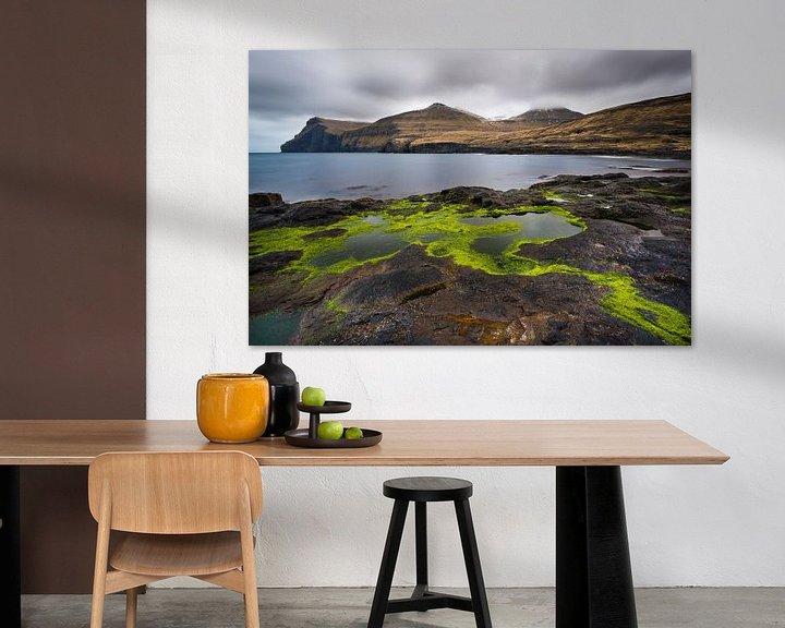 Impression: algues vertes sur Denis Feiner
