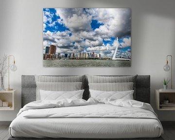Der Schwan in den Wolken. von Aiji Kley