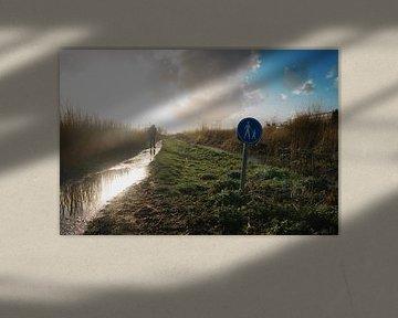 Marcher dans le polder
