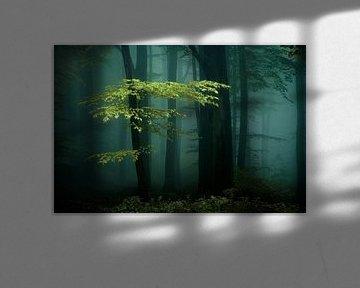 Eerie Darkness. van Inge Bovens