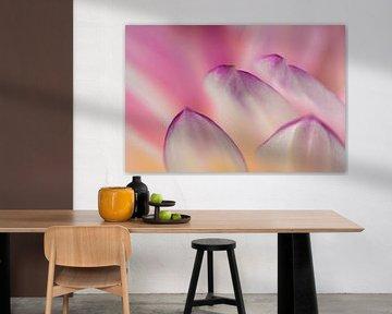 Blütenblatt von Monique Plantinga