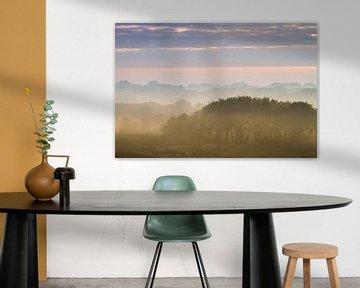 nebel über den dünen von wassenaar von Menno van Duijn