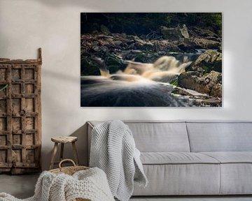 Vallee de la Hoëgne, Ardennen (België) van Carola Schellekens