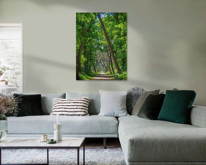 Beispiel: Ein Weg unter grünen Blättern von Martijn Tilroe