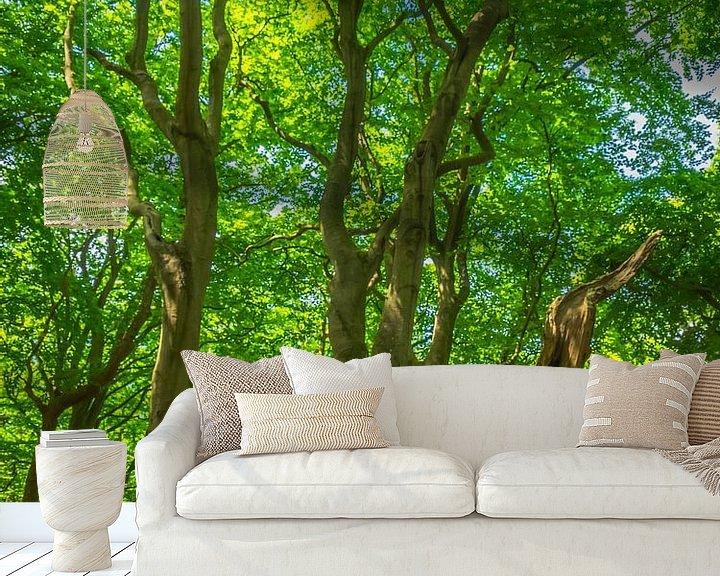 Beispiel fototapete: Alter Baum mit grünen Blättern von Martijn Tilroe