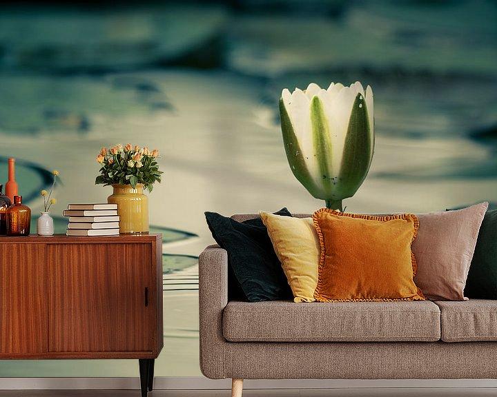 Sfeerimpressie behang: Waterlelievijver van Denis Feiner