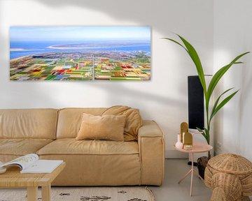 Panorama bloembollen Texel en Noord-Holland