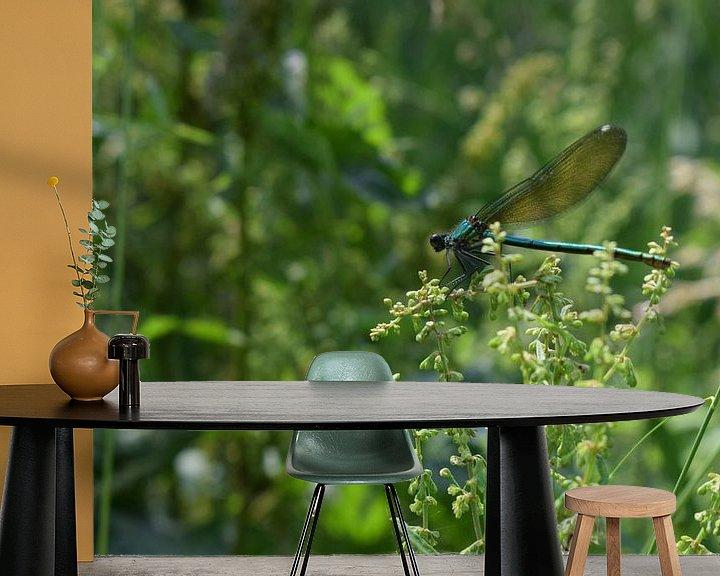 Beispiel fototapete: Libelle in natürlicher Landschaft von Breezy Photography and Design