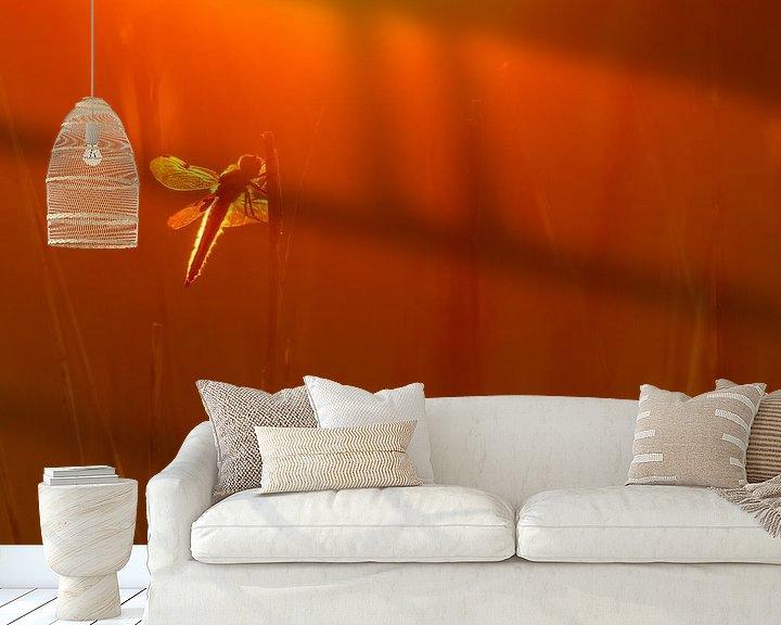 Sfeerimpressie behang: Viervleklibel van Pim Leijen