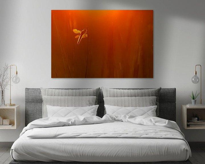 Sfeerimpressie: Viervleklibel van Pim Leijen