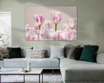 Tulpen-Efteling von Nancy van Verseveld