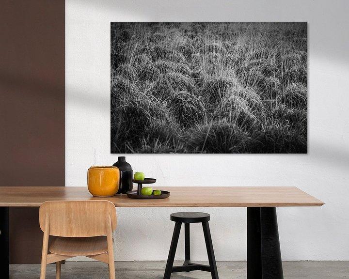 Sfeerimpressie: Natuur in zwart/wit van Ina Muntinga