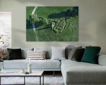 Grüne Wiese mit Bach von oben von Robert Styppa