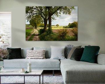 Groesbeek-Landschaft von Nancy van Verseveld