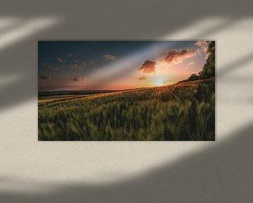 Zonsondergang in Münsterland van Steffen Peters