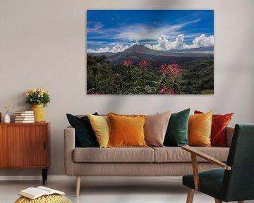 Vulkanier Bali Agun von Bert Weber
