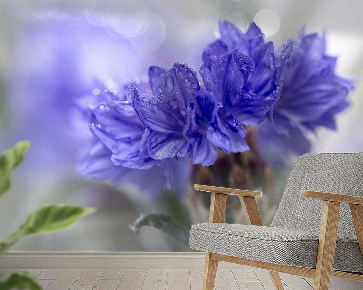 Sfeerimpressie behang: Blue Beauty..... (bloem, blauw, macro) van Bob Daalder