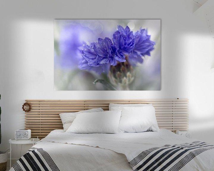 Sfeerimpressie: Blue Beauty..... (bloem, blauw, macro) van Bob Daalder