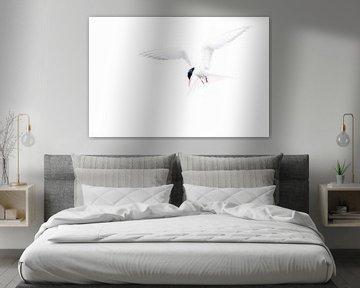 Visdief, hangend in de lucht van Ina Bouhuijzen