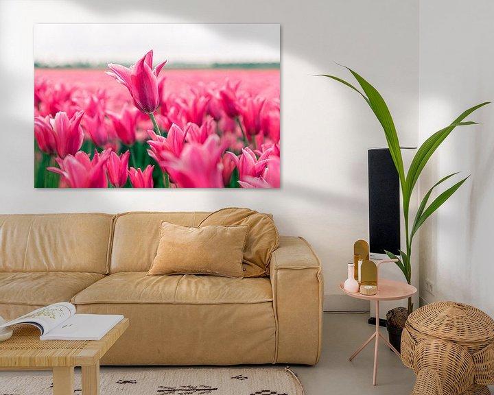 Sfeerimpressie: Tulpenveld van marco de Jonge