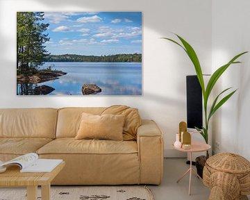 Le paysage suédois 151 sur Geertjan Plooijer