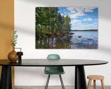 Le paysage suédois 152 sur Geertjan Plooijer