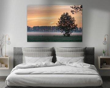 oranje wit en groen van Tania Perneel