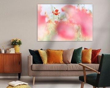 Colorful spring van Bob Daalder