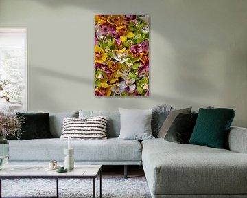 Alle Orchideen von Mariëlle Verhoef