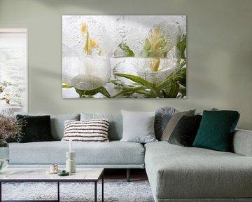 Weiße Glockenblume in Eis 5 von Marc Heiligenstein