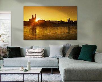Magdeburg im Sonnenuntergang