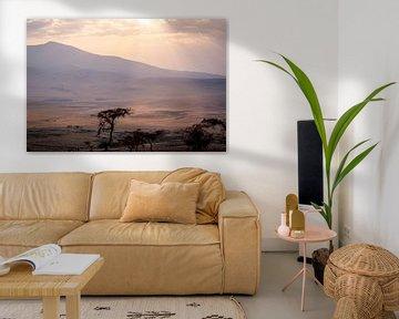 Ondergaande zon boven de Serengeti van Julian Buijzen