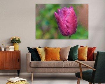 Tulp in de regen van Joram Janssen