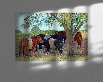 Groep koeien staand onder een boom (bewerkte foto)