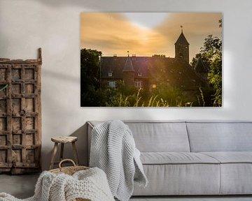 het kasteel van Waardenburg van Tania Perneel