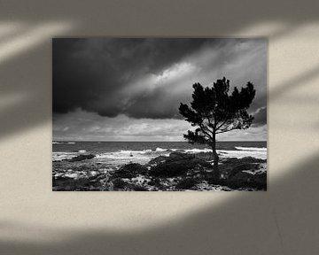Baltic Seascape two von Mike Devlin