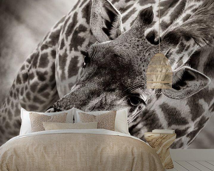 Beispiel fototapete: Giraffe auf der Serengetti in Tansania, Afrika von Ginkgo Fotografie