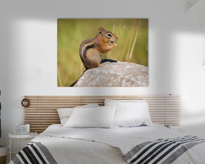 Beispiel: Streifenhörnchen von Denis Feiner