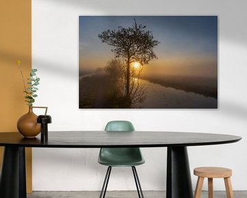 Silhouet van boom in mist bij zonsopkomst in de Alblasserwaard van Beeldbank Alblasserwaard