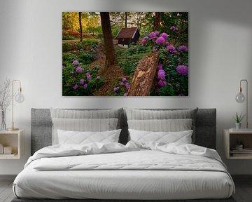 Märchenlandschaft mit Rhododendren und Häuschen von Jenco van Zalk